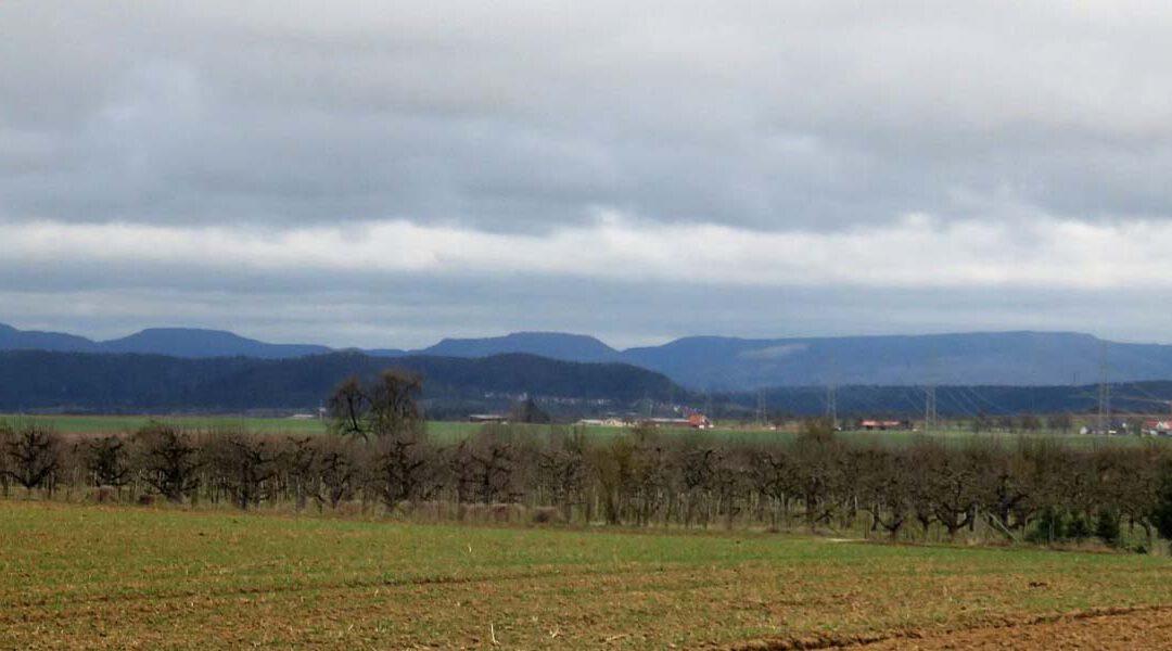 Drei Tage im Herbst von Tübingen nach Horb