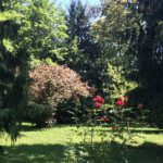 keb-ludwigsburg-kurs-mit-psalmen-unterwegs-im-park